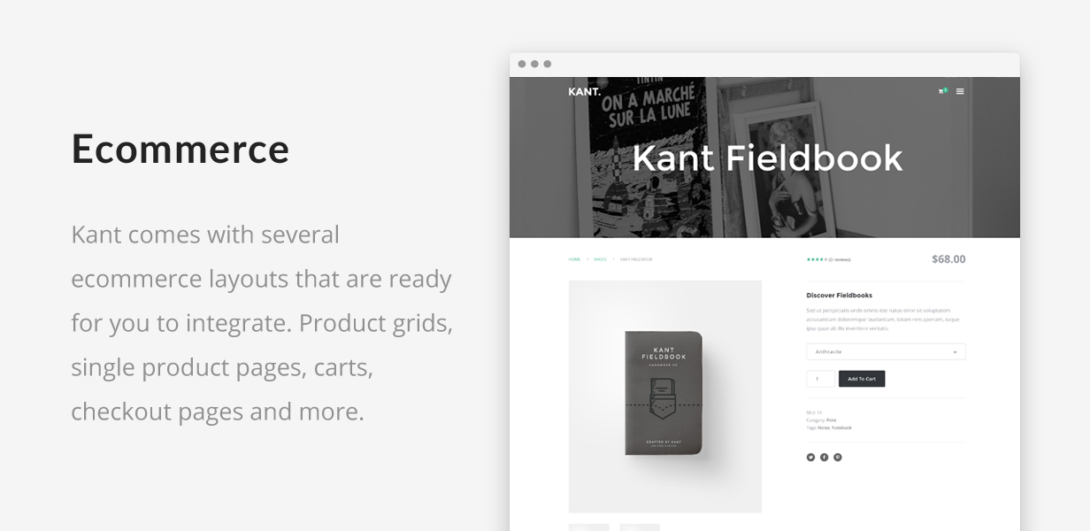 Kant - A Multipurpose Template For Startups And Freelancers - 4