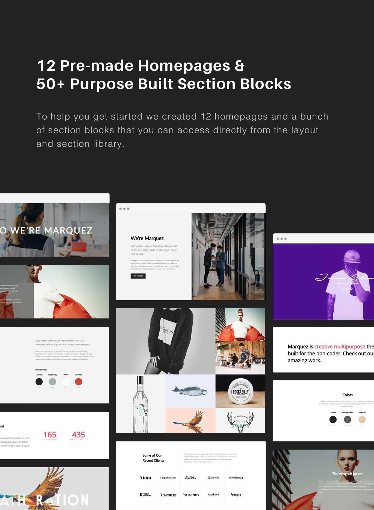 Marquez - A Creative WordPress Theme for Creatives and Agencies - 5